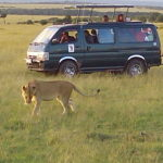 Masai mara Packages fro residents